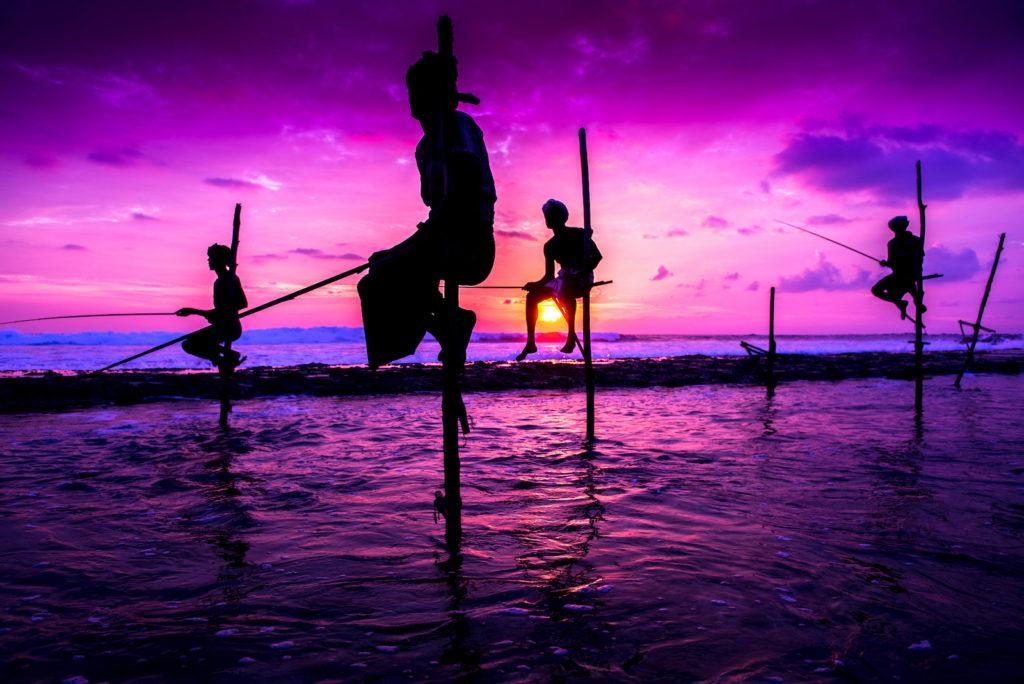 Sri Lanka - 1554 - Fishing at night