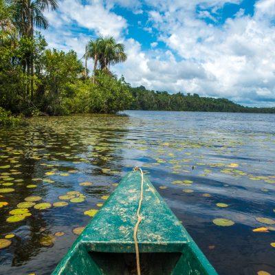 Peru Amazon Experience
