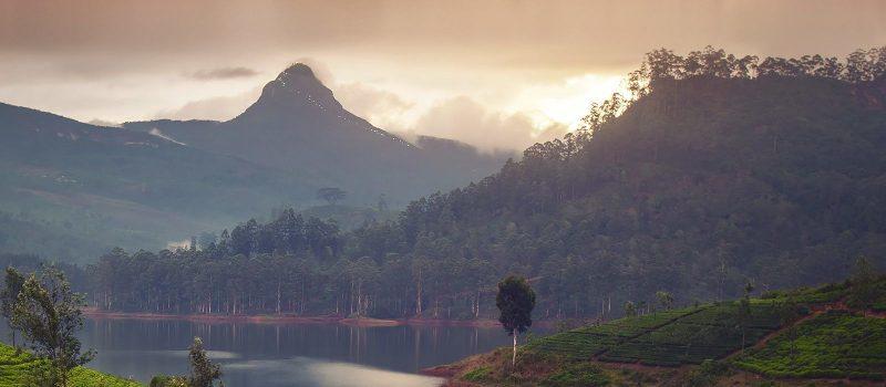 Sri Lanka - 1554 - Hatton