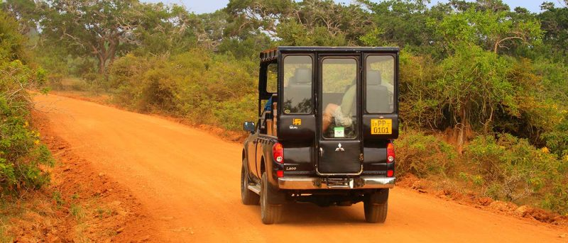Sri Lanka - 1554 - Yala driving trip