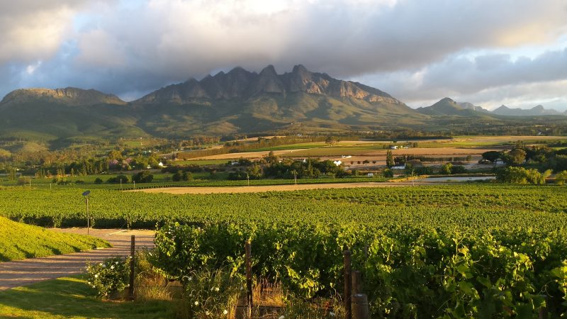 Cape Winelands Val Du Charron provided by Tourvest DMC