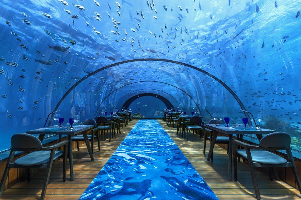 Maldives - Lhaviyani Atoll - 1567 - Hurawalhi Island Resort - 5.8 Undersea Restaurant Interior - Underwater Dining