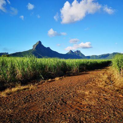 Mauritius Island Discovery