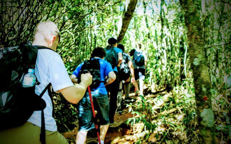 Brazil Adventure - 1569 - Rio de Janeiro - Jungle Hike - Team Climb