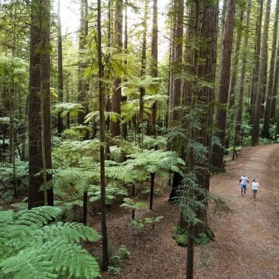New Zealand North Island Self Drive Discovery