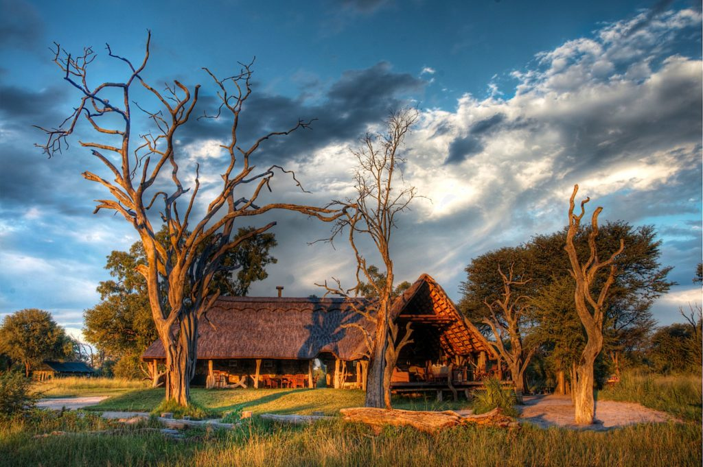 Zimbabwe - Hwange - 1564 - Tented Main Lodge