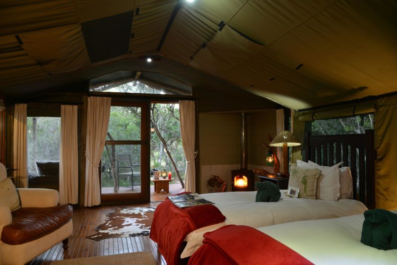 South Africa - Eastern Private Game Reserves - Sibuya Forest Camp - Tent interior twin beds