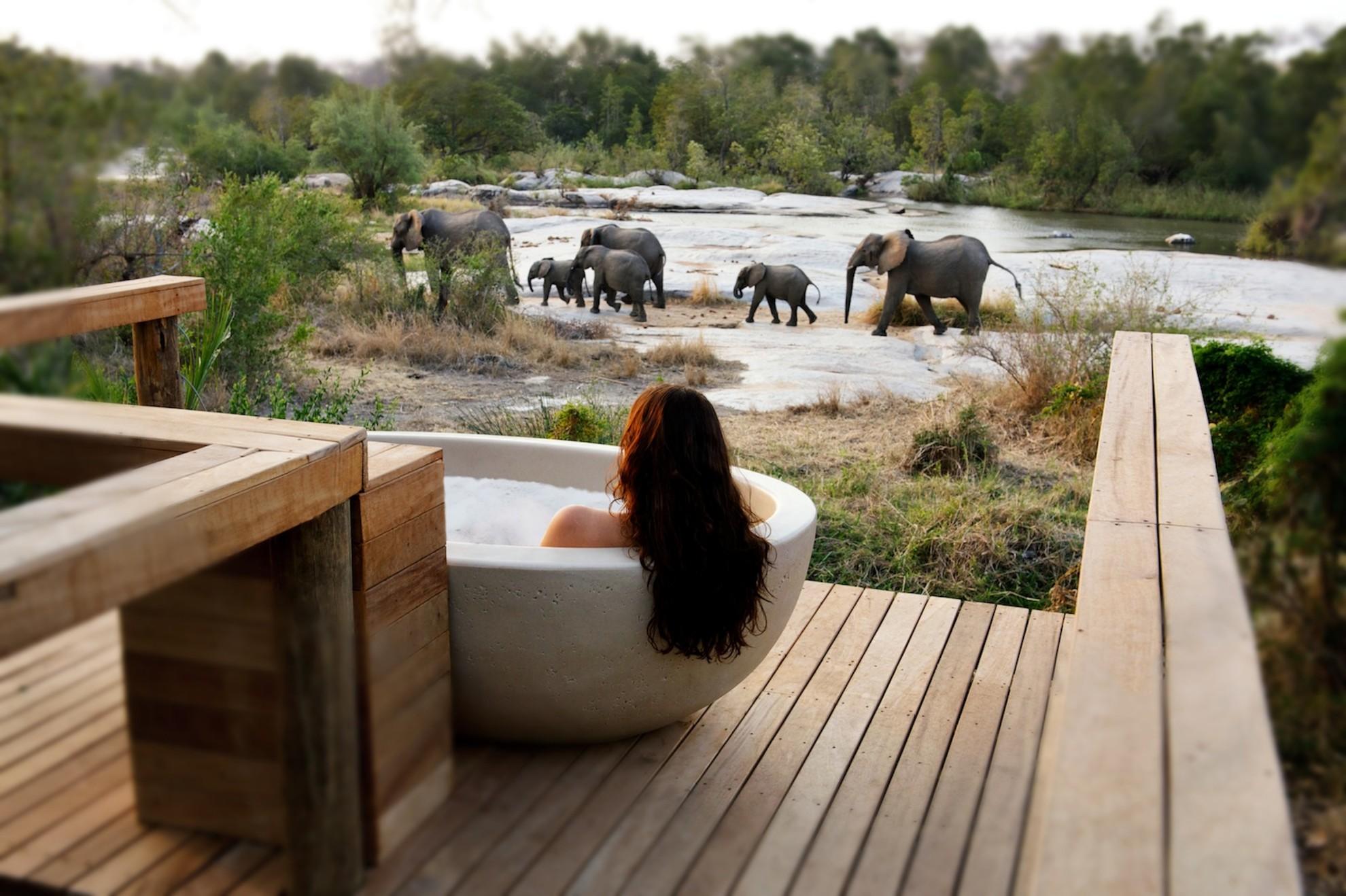 Londolozi Private Granite Suites Bath Expereince with Elephants