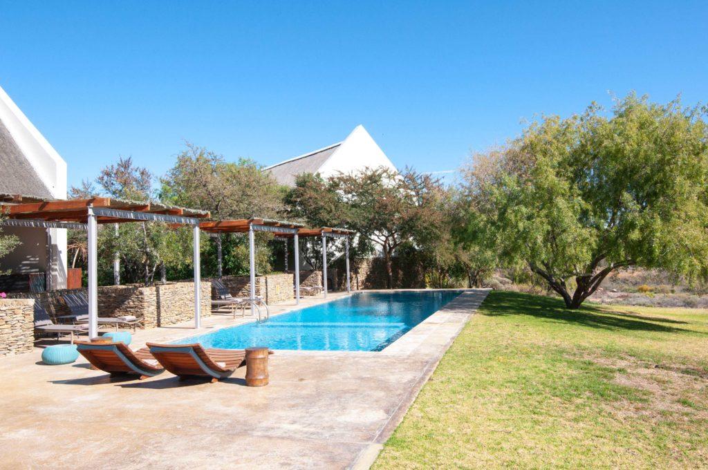 South Africa - Sanbona Wildlife Reserve - 4948 - Swimming Pool