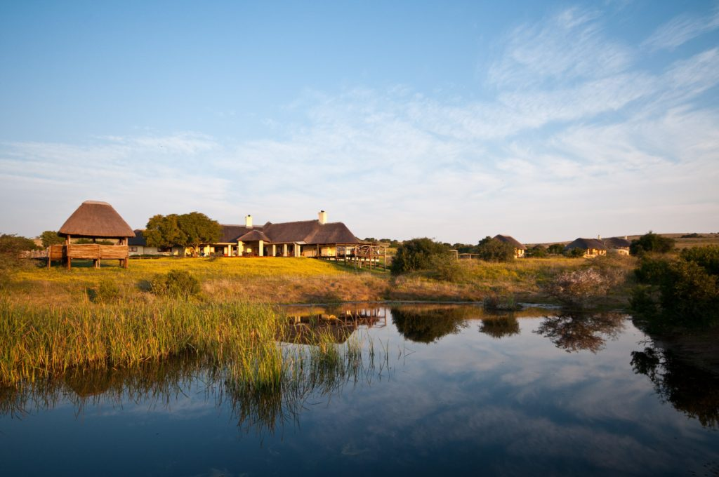 South Africa - Eastern Private Game Reserves - Amakhala Hlosi Game Lodge - River views of the lodge