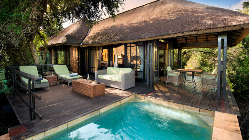 South Africa - andBeyond Phinda Private Game Reserve - Vlei Lodge - Suite pool
