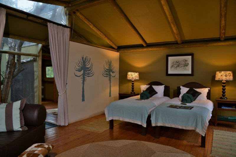 South Africa - Eastern Private Game Reserves - Sibuya River Camp
