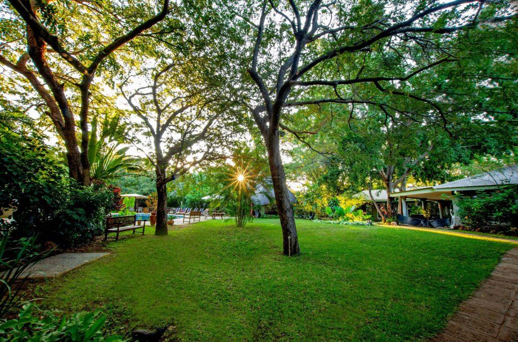 Bayete Guest Lodge Victoria Falls Zimbabwe Lodge Gardens