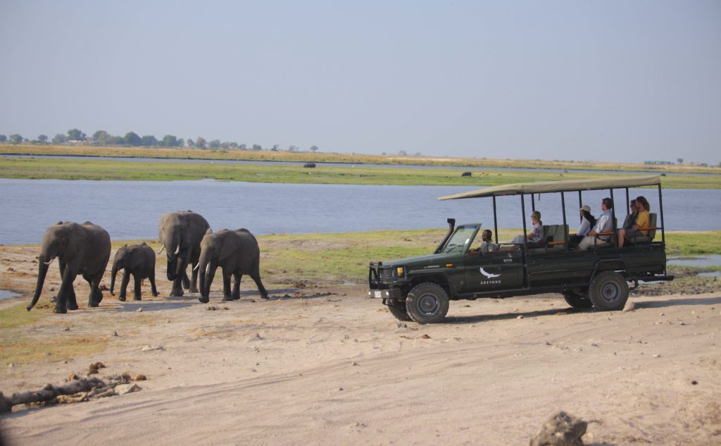 Chobe Under Canvas Game Drive Elephant Spotting