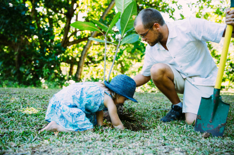 Seychelles - North Island - 1554 - North Island Resort - Beach Buddy Tree Planting - Endemic Planting