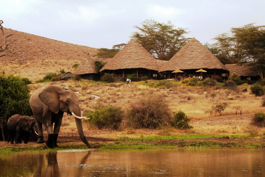 Kenya - Amboseli National Park - Elewana Tortilis Camp Amboseli - Main Areas Michael Poliza Photography
