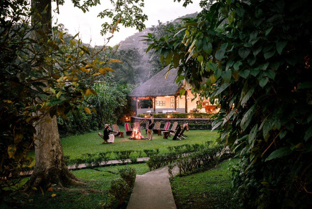 Uganda - Bwindi Impenetrable Forest - 1568 - Outside Garden