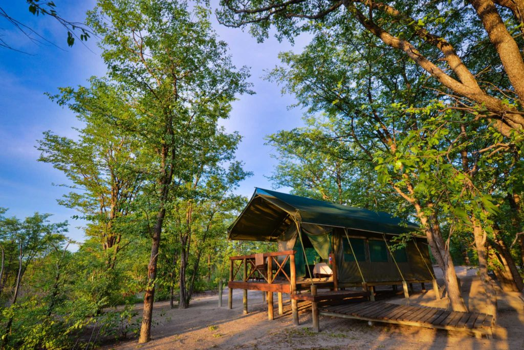 Botswana - Moremi Game Reserve - 1553 - Mankwe Bush Lodge Meru Style tented chalets