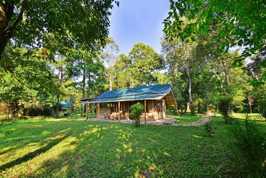 Uganda - Queen Elizabeth National Park - 1568 - Ishasha Outside Chalet Area