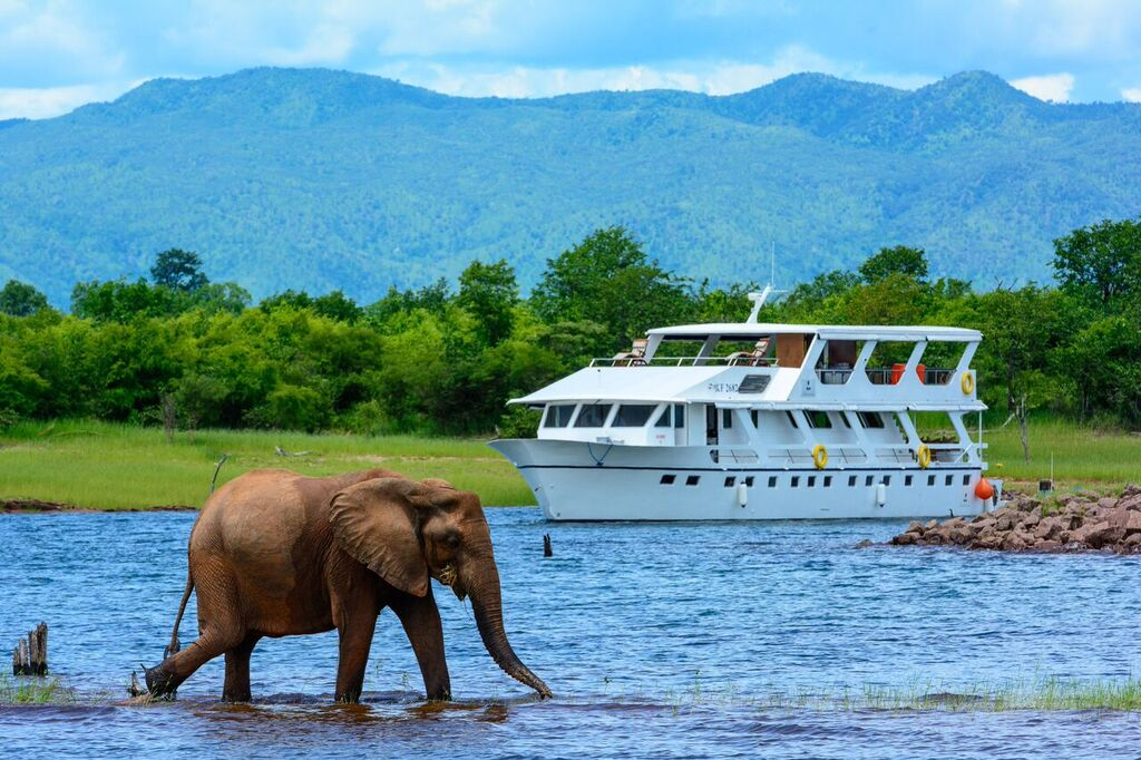 Matusadona Luxury Houseboat Lake Kariba Zimbabwe Elephant Encounter
