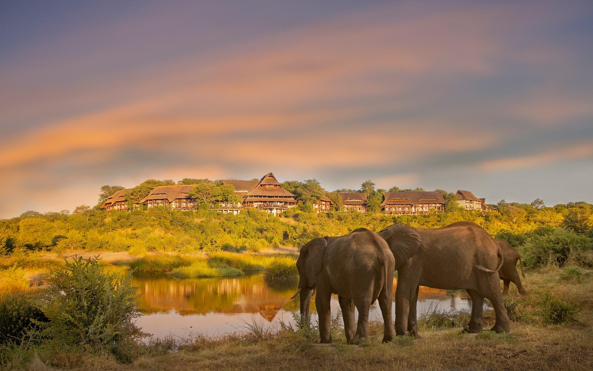 Elephants_in_front_of_victoria_falls_safari_lodge