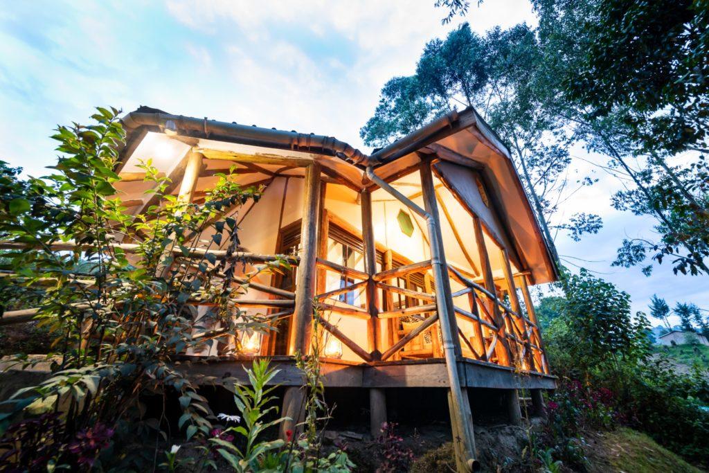Uganda - Bwindi Impenetrable Forest - 1568 - Lodge Outside Room