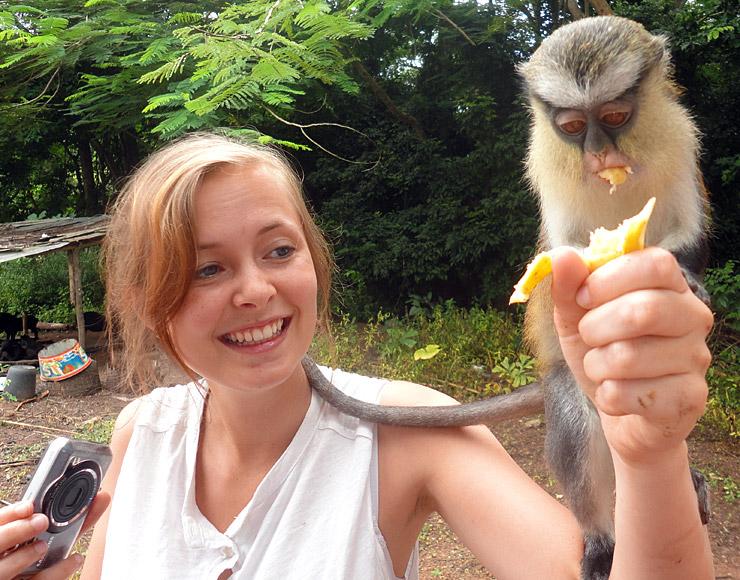 Monkeys in Ghana