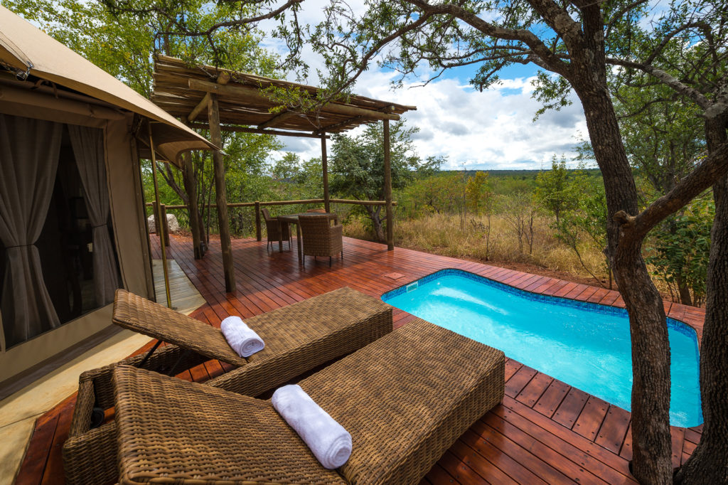 Zimbabwe - Victoria Falls - 1564 - Sun Loungers with Outdoor Pool