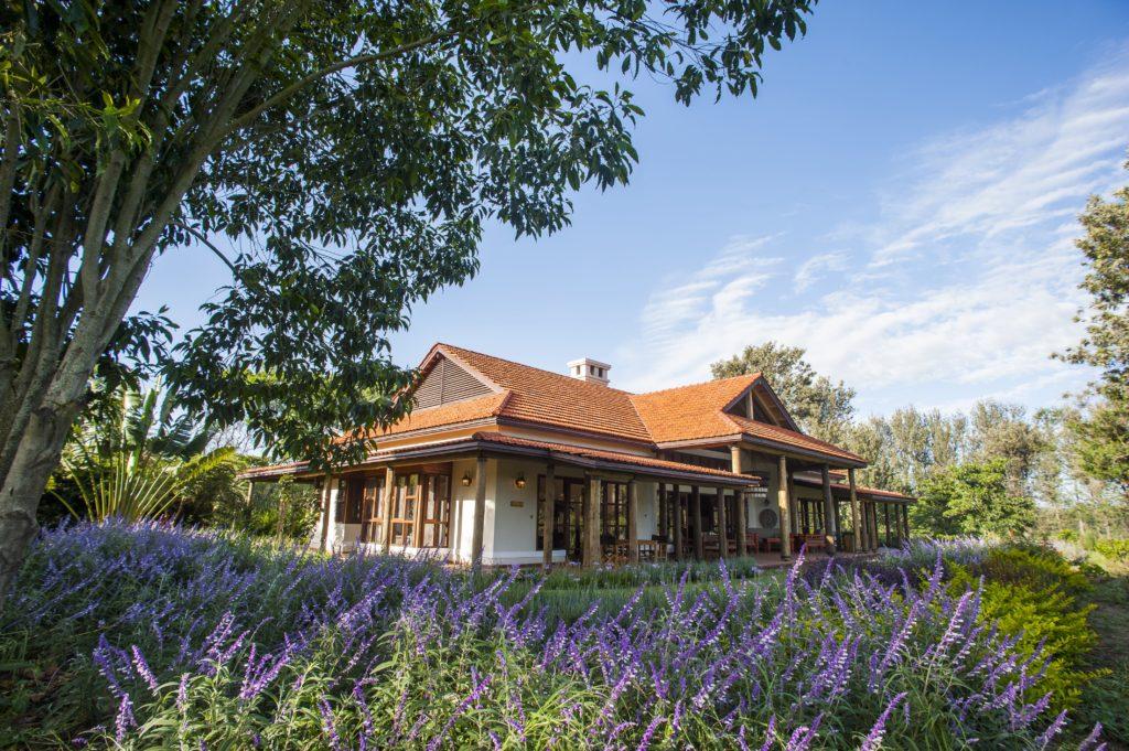 Tanzania - Arusha - 1568 - Legendary Lodge gardens
