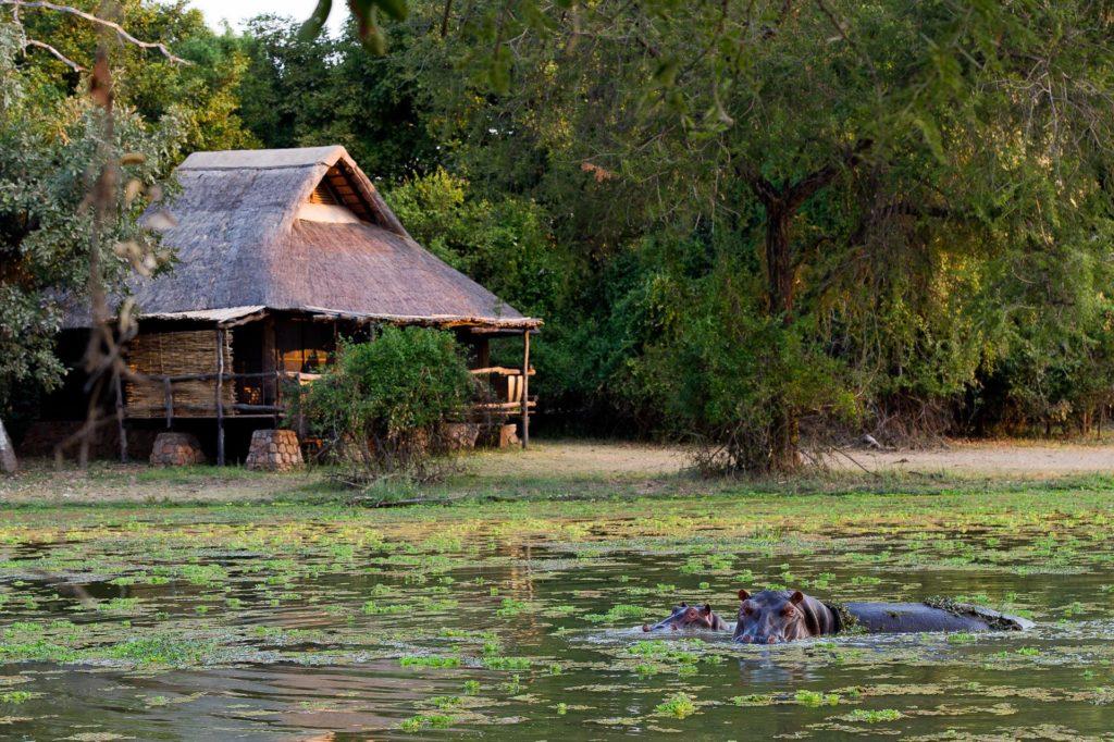 Zambia - South Luangwa National Park - 1564 - Lodge and Lake with Crocodile