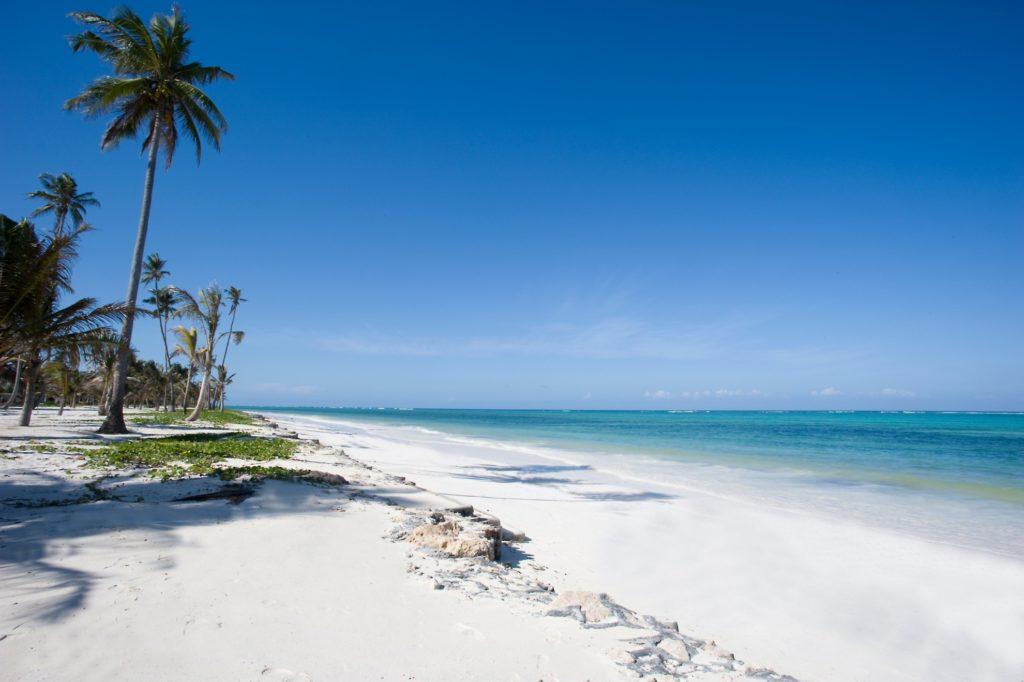 Tanzania - Zanzibar - 1567 - White Sand Beach