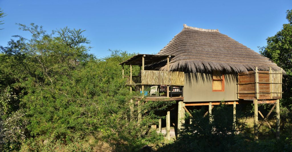 Chobe Bakwena Lodge Treetop Chalet