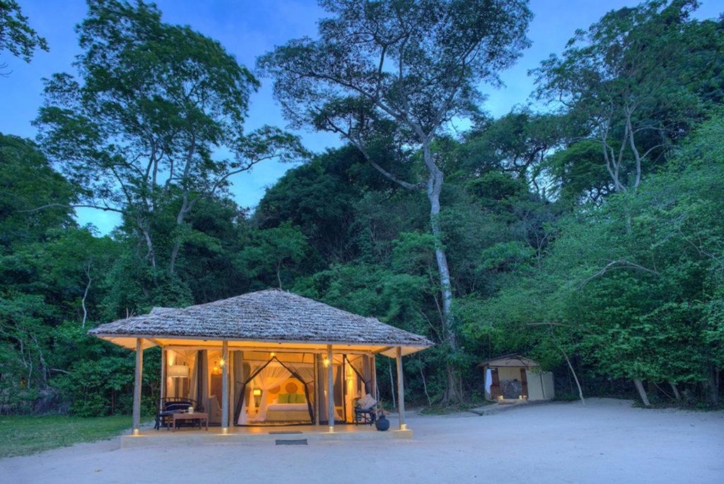 Tanzania - Lake Victoria National Park - 1568 - Rubondo Island Camp