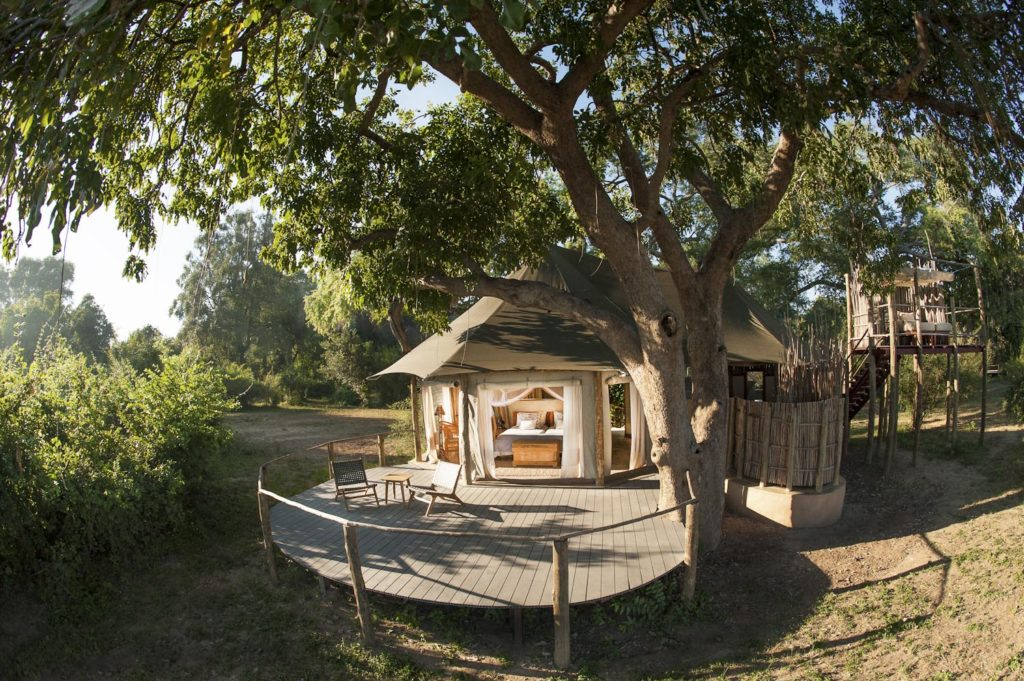Zambia - South Luangwa National Park - 1564 - Lodge Decking with Overhanging Tree
