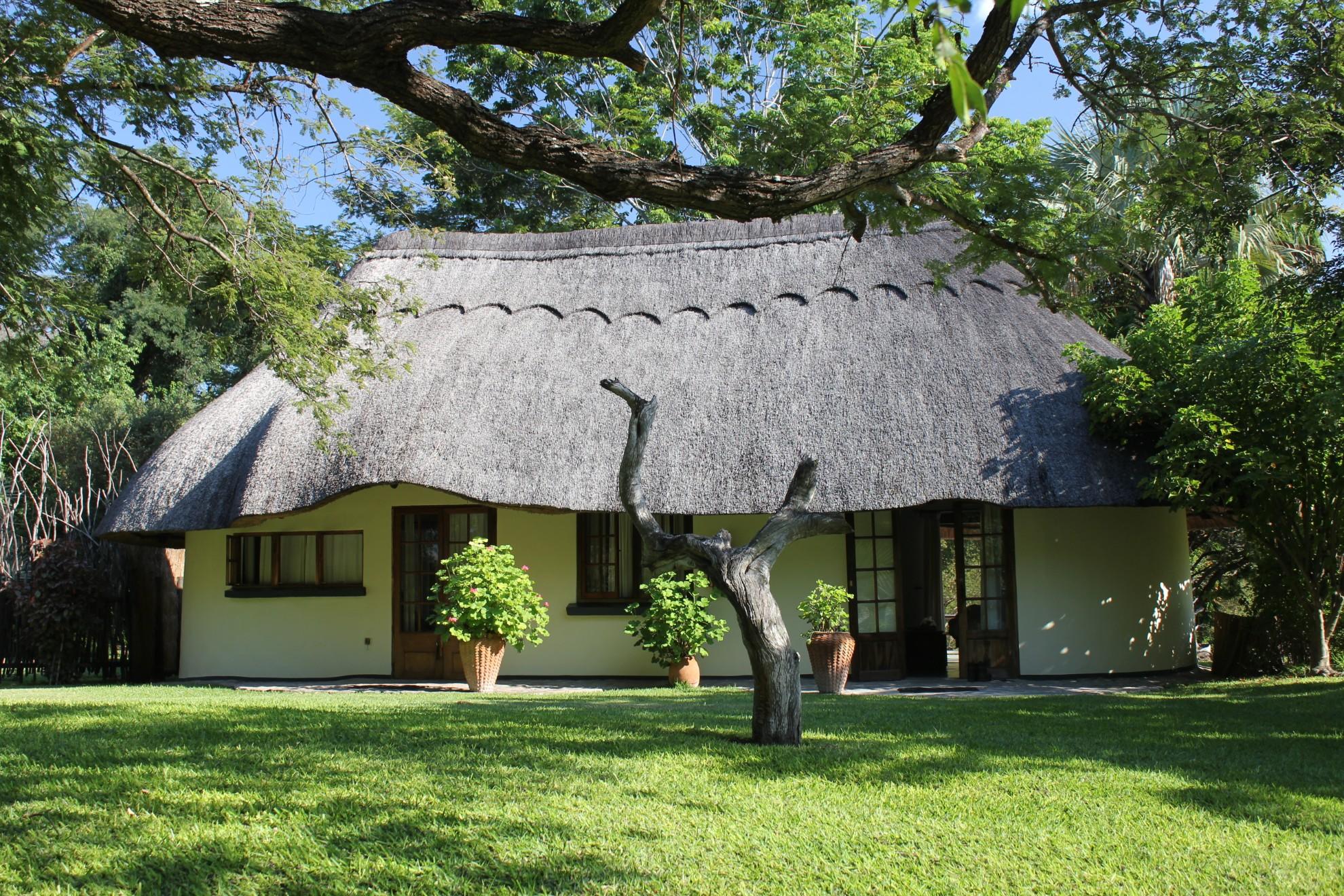 Waterberry Zambezi Lodge Livingston Zambia sunbird_and_wagtail