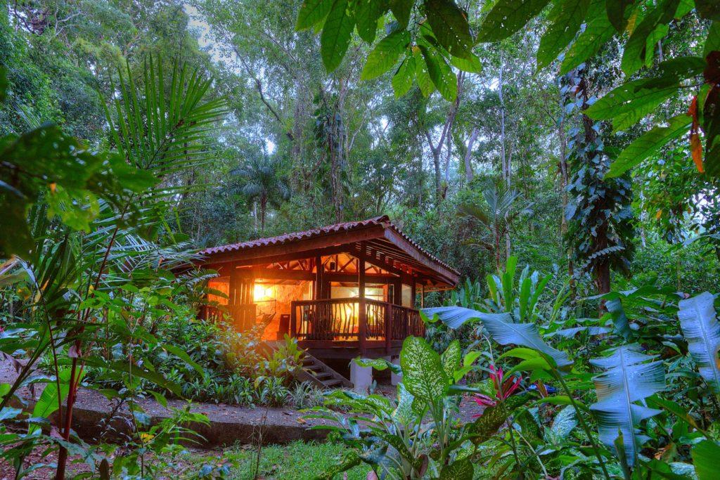Costa Rica - Golfo Dulce - 1570 - Playa Nicuesa Jungle Gardens