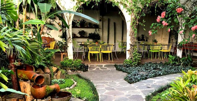 El Salvador- San Salvador- 10024- Arbol de Fuego Gardens