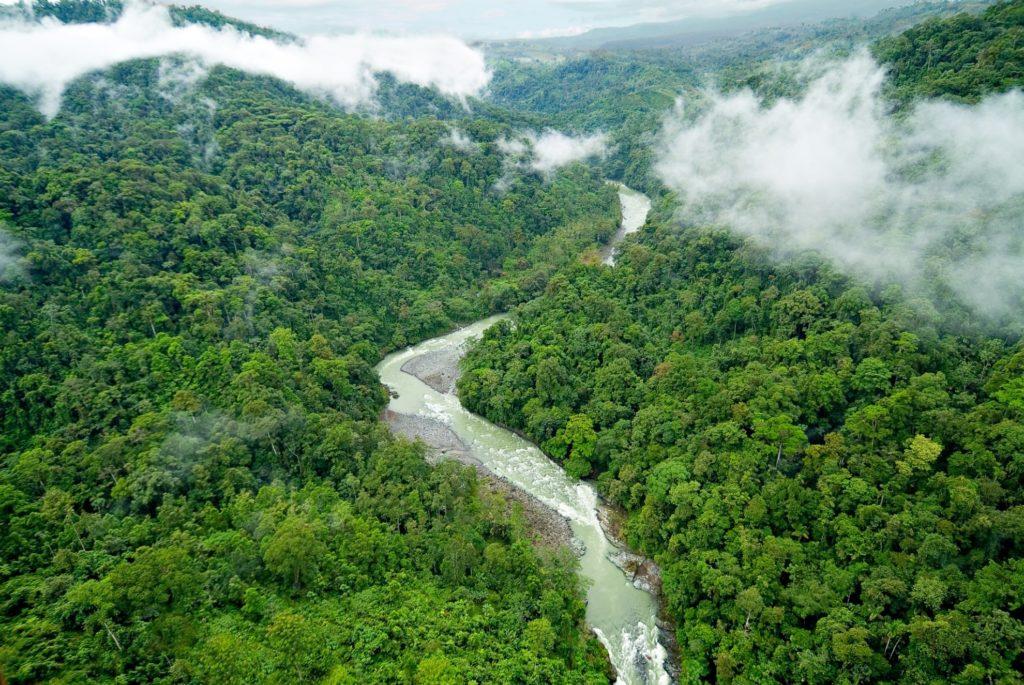 Costa Rica- Pacuare- 1570- Pacuare Lodge River through the jungle