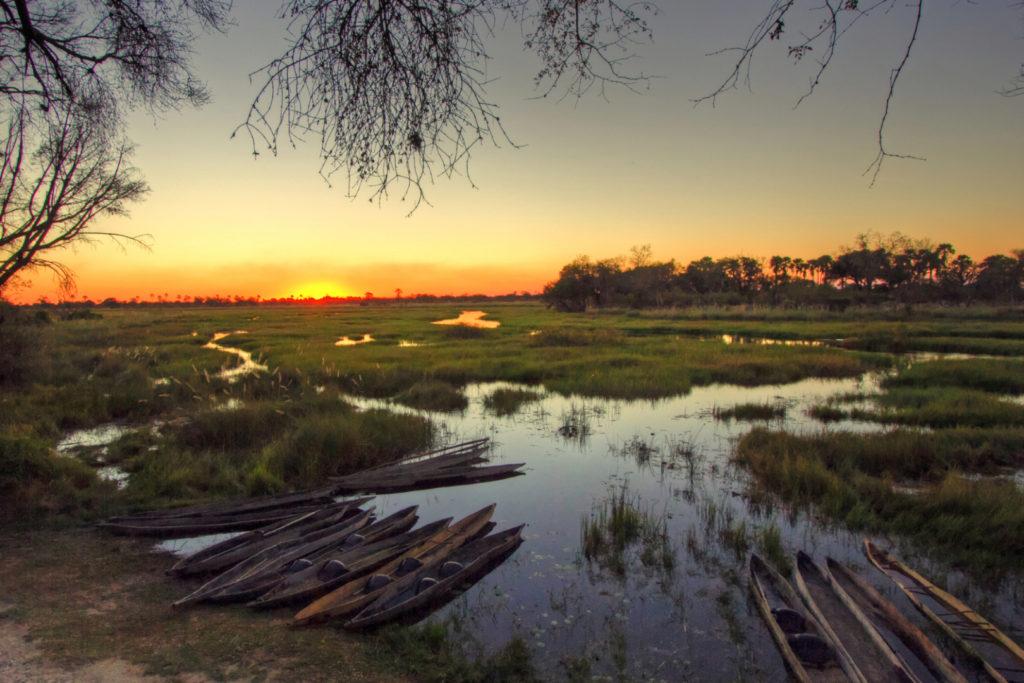 Botswana - 1553 - Oddballs - sunset