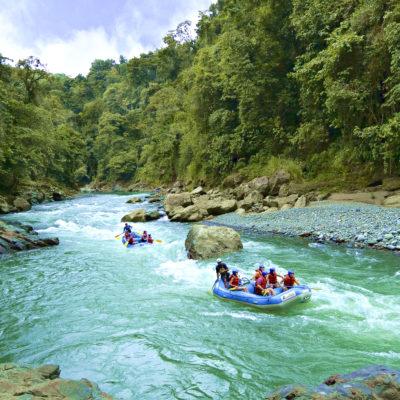 Costa Rica Corcovado Rainforest Experience
