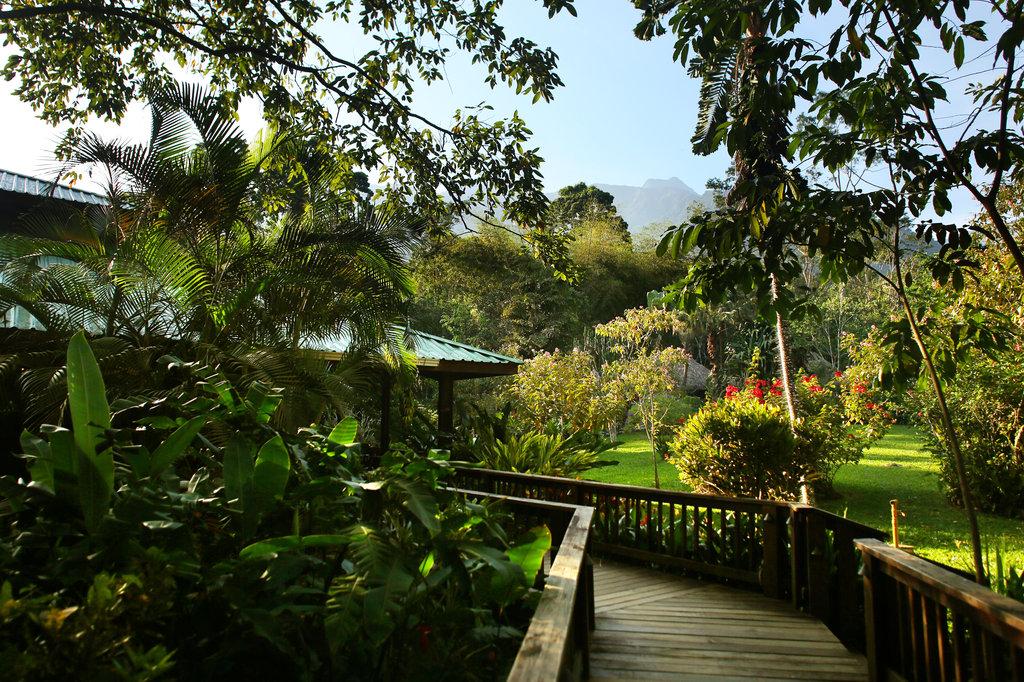 Honduras - La Ceiba - 10024 - Pico Bonito Lodge Gardens
