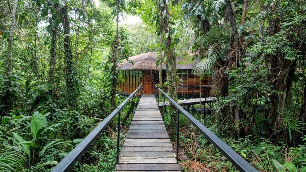 Ecuador - Quito - 1557 - Sacha Lodge Walkway to Lodge