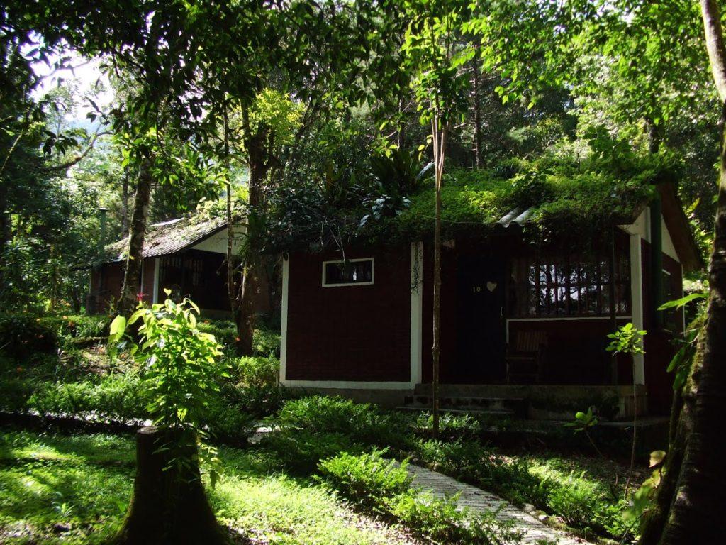 Nicaragua - Matagalpa - 10024 - Selva Negra Ecolodge - Lodges