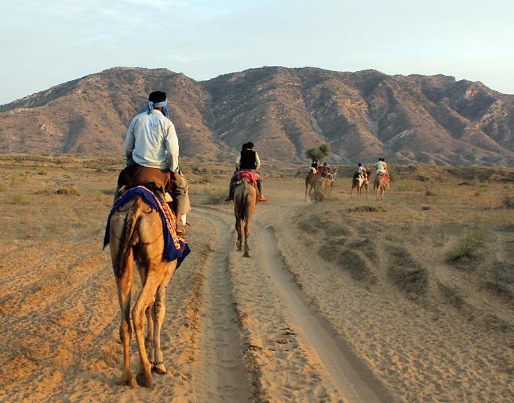 Rajasthan Camel Trekking