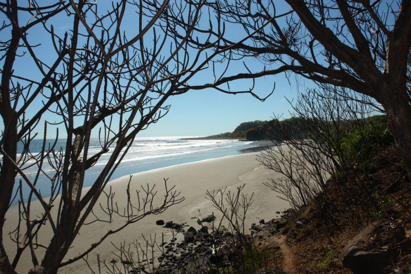 Complete El Salvador Experience - 10024 -57 las flores 30 beach