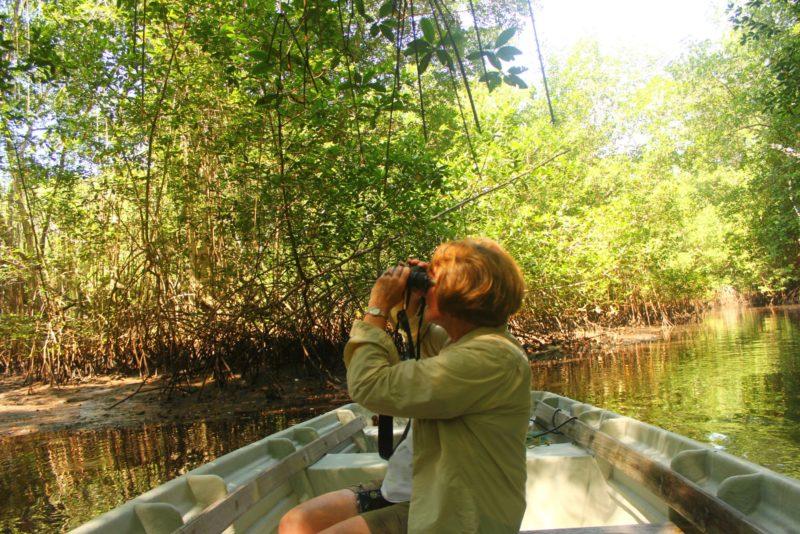 Complete El Salvador Experience - 10024 - River wildlife spotting