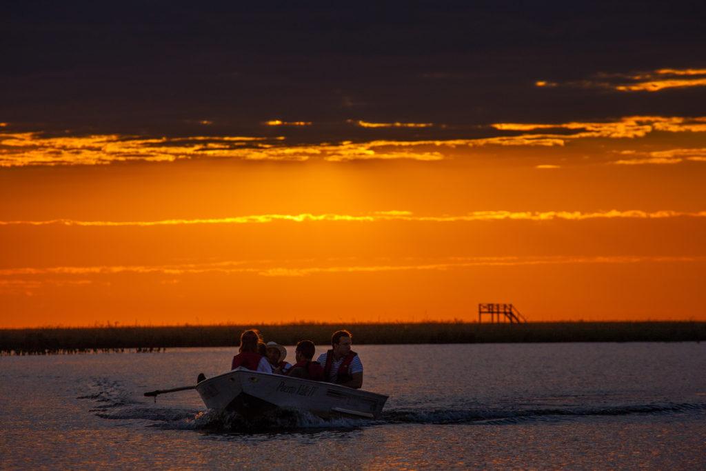Argentina - Iberá Wetlands - 1584 - Puerto Valle - Lake Boat Trip