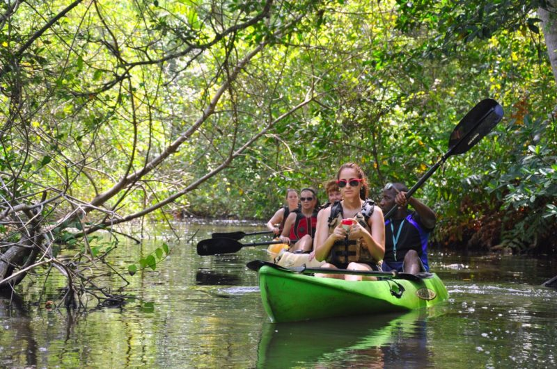 Honduras Highlights - 10024 - Kayak Punta Izopo - Wildlife experience