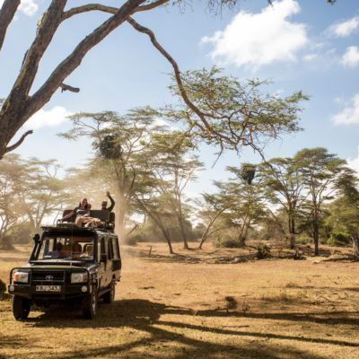 Elewana Luxury Fly In Safari