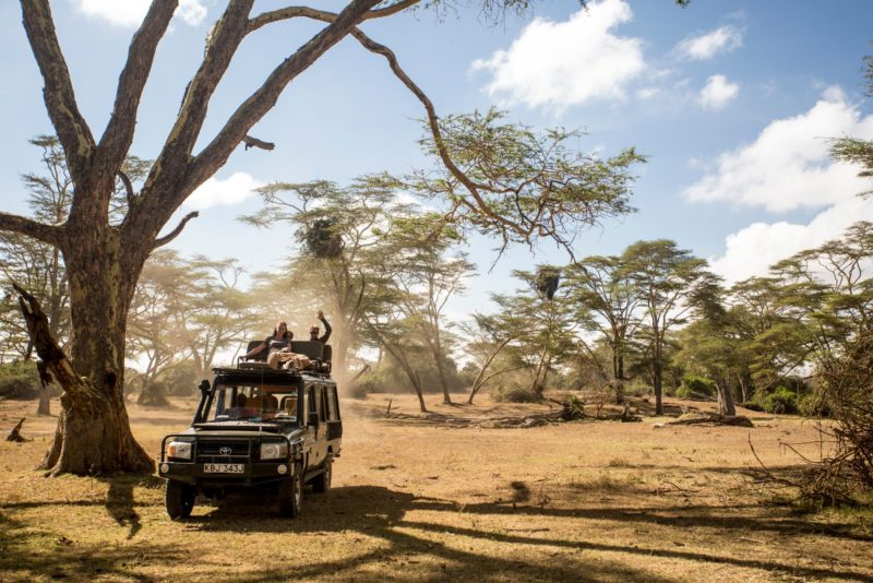 Kenya - 12890 - Safari Jeep on Game Drive
